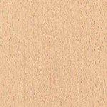 4305-new-oslo-beech-150x150