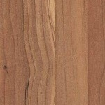 4449-sapwood-150x150