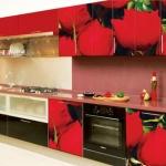 003 кухня с фотофасадом